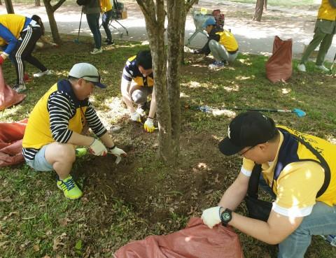 리레코 코리아 직원들이 나무 뿌리 건강 지키기를 위해 잡초를 제거하고 있다