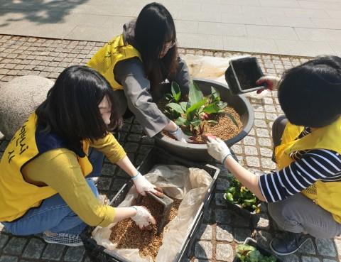 리레코 코리아 직원들이 수생식물을 화분에 심고 있다