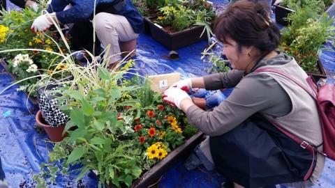 가든프로젝트에서 진행한 나만의 정원 만들기 프로그램