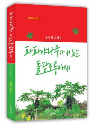 윤상영 소설집 파파야나무가 서 있는 돌담모퉁이에서 표지