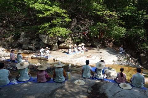 통도사 템플스테이 참가자들이 계곡에서 명상을 하고 있다