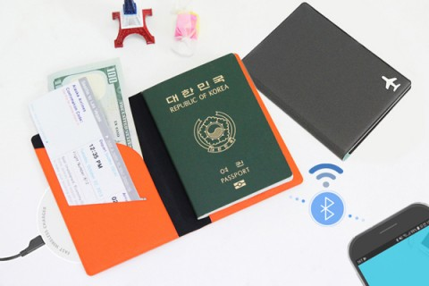 스마트여권
