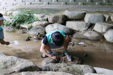 프로그램에 참여한 어린이이가 서울숲을 탐방하며 물 속 생물을 관찰하고 있다