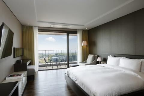 디아넥스 호텔 객실