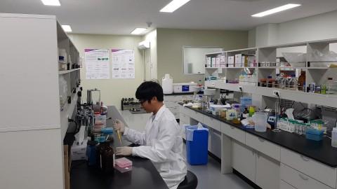 아미코스메틱 R&D센터가 중대가리풀 추출물을 유효성분으로 함유하는 화장료 조성물에 대한 연구 개발을 진행해 특허를 획득했다