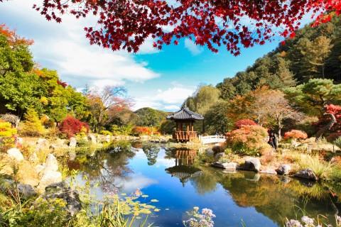 구르미그린달빛, 군주 등 다수의 드라마 촬영지로 유명한 정원 서화연