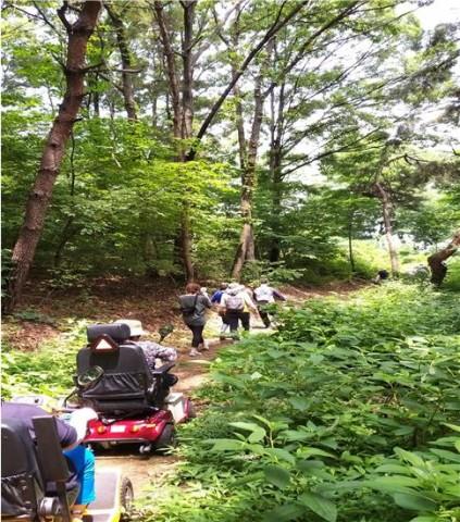 한국산악회 아름다운 산행 참가자들이 무장애숲길을 오르고 있다