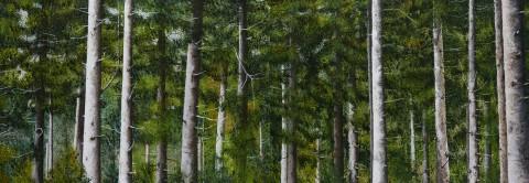 문비숲에서