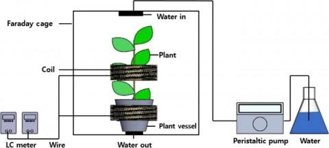 건국대 학생팀이 식물 유도계수 측정 장치를 개발했다