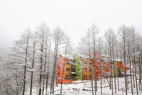 충북 웰니스 관광 클러스터로 선정된 충주 깊은산속 옹달샘의 겨울