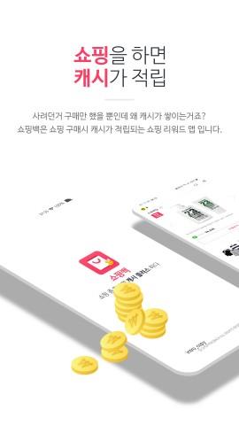 쇼핑백 소개