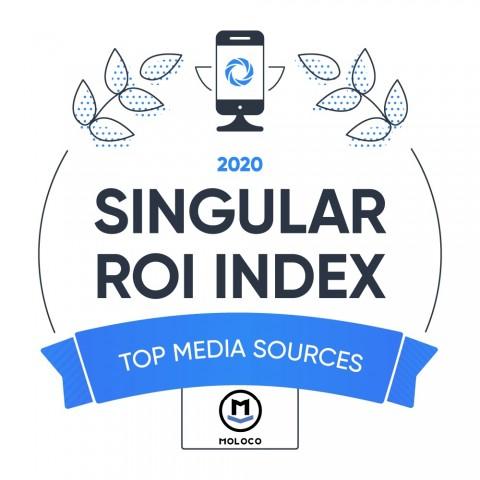 Singular 2020 ROI Index