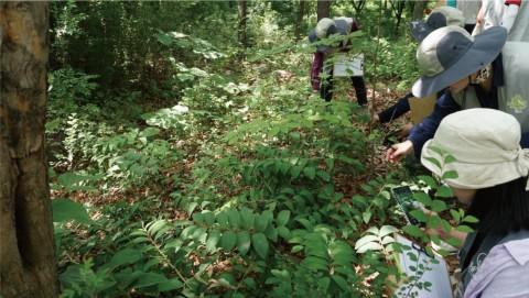 서울숲에서 시민들이 식물을 관찰하고 있다
