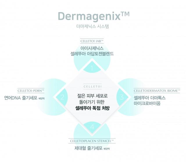 더마제닉스 시스템(CELLETOI Dermagenix™)