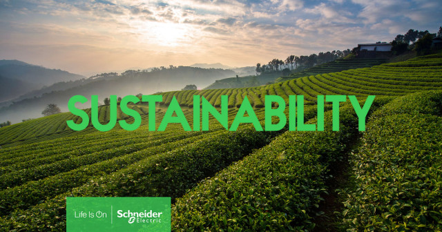 Schneider Electric is striving for sustainability