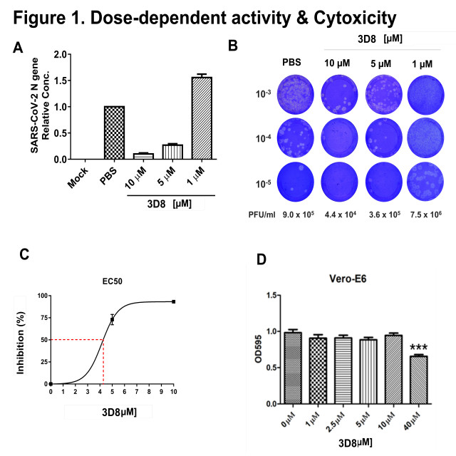 3D8 scFv의 농도에 따른 신종코로나바이러스에 대한 치료 효과와 세포 독성