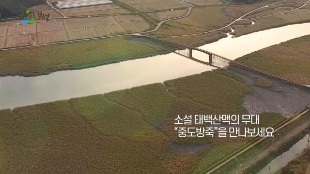 '삼삼오오 보성여행지 10선' 랜선 여행 - 중도방죽 편