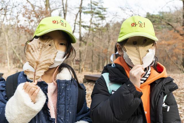 2020 와숲 겨울숲 활동