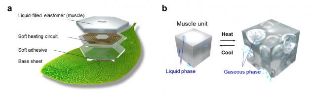 a, 연구팀이 개발한 피부 형태의 부력 제어 기술 및 이를 활용한 헤엄치는 나뭇잎 모식도. b, 부력 제어 원리. 탄성 중합체(외력의 영향을 많이 받는 고분자 화합물) 내부에 끓는...