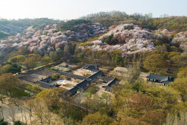 한국민속촌 전경