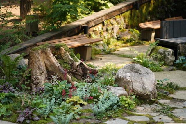 녹색 이끼와 다양한 식물을 감상할 수 있는 정원