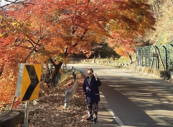 지난해 초록여행을 통해 가을 여행을 즐기고 있는 고객