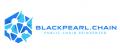 블랙펄체인 Logo