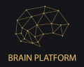브레인플랫폼 Logo