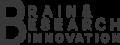 비엔알아이 Logo