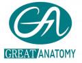 그레이트 아나토미 Logo