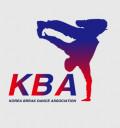 대한브레이크댄스협회 Logo