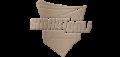 스마트골프 Logo