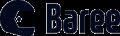 바리코퍼레이션 Logo